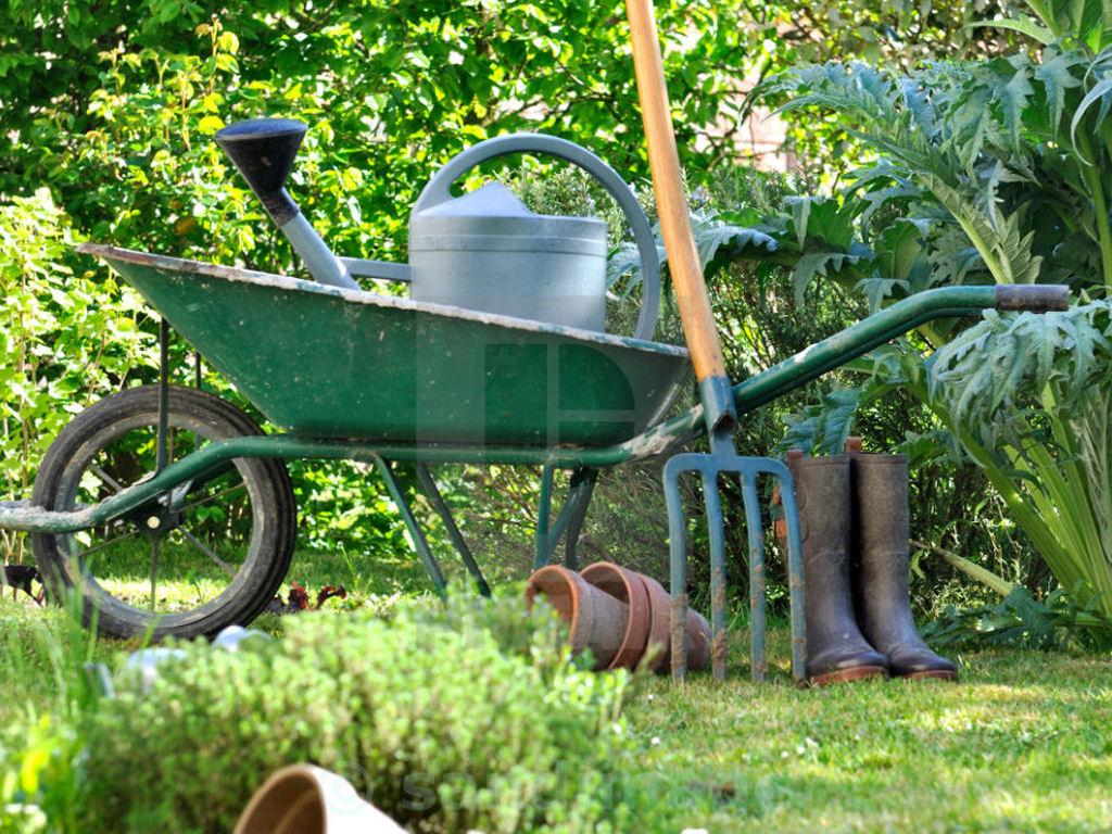 Fife Garden Maintenance
